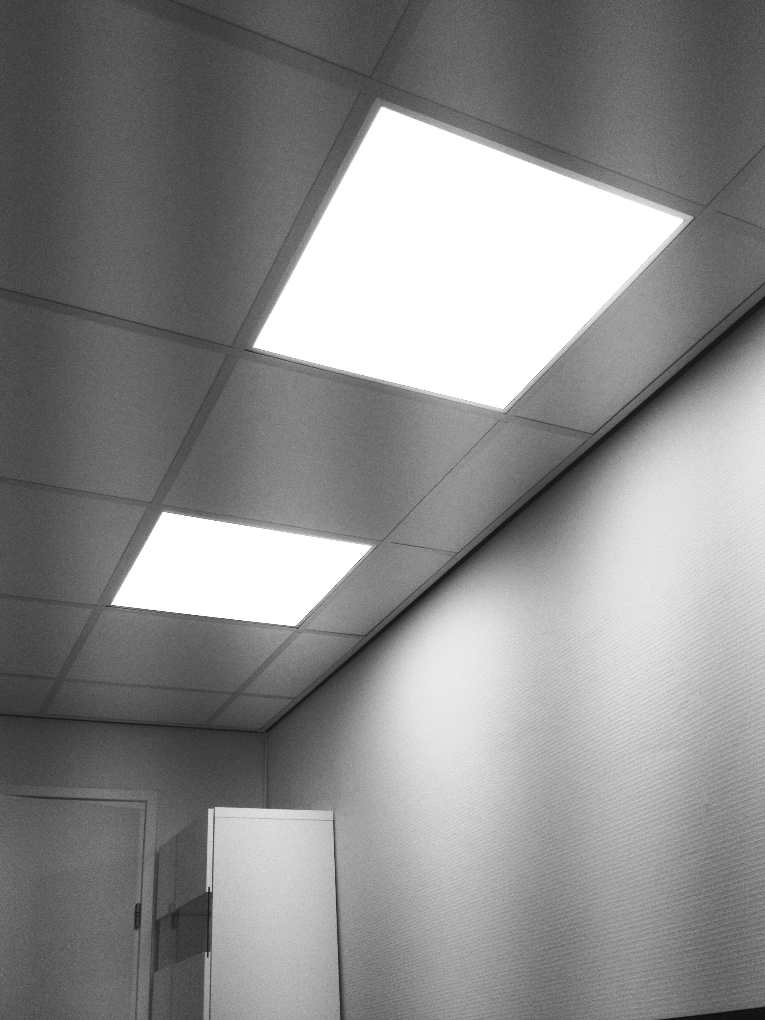 LED paneel, TR 600 x 600 mm, 6000K